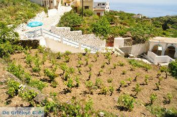 Spoa | Eiland Karpathos | De Griekse Gids foto 004 - Foto van De Griekse Gids