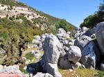 Schitterend landschap - Kefalonia - Foto 44 - Foto van De Griekse Gids