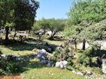 Schitterend landschap - Kefalonia - Foto 45 - Foto van De Griekse Gids