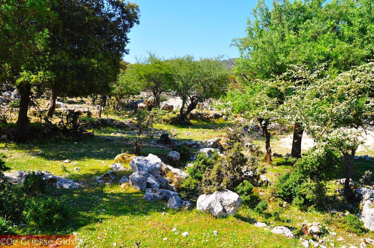 foto Schitterend landschap - Kefalonia - Foto 45