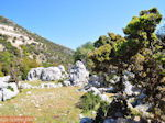 Schitterend landschap - Kefalonia - Foto 46 - Foto van De Griekse Gids