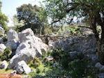 Schitterend landschap - Kefalonia - Foto 48 - Foto van De Griekse Gids