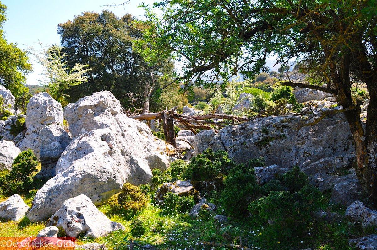 foto Schitterend landschap - Kefalonia - Foto 48