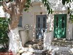 Fiskardo - Kefalonia - Foto 127 - Foto van De Griekse Gids