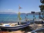 Karavomilos bij Sami - Kefalonia - Foto 209 - Foto van De Griekse Gids