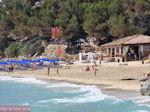 Makris Gialos-strand Lassi - Kefalonia - Foto 292 - Foto van De Griekse Gids