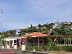 Svoronata - Kefalonia - Foto 329 - Foto van De Griekse Gids