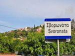 Svoronata - Kefalonia - Foto 331 - Foto van De Griekse Gids