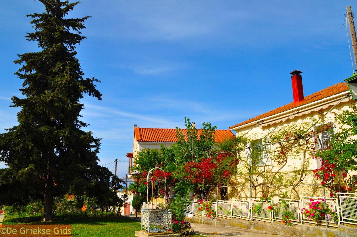 foto Kourkoumelata bij Svoronata - Kefalonia - Foto 334