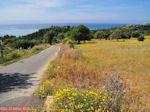 Trapezaki - Kefalonia - Foto 343 - Foto van De Griekse Gids