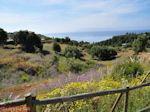 Trapezaki - Kefalonia - Foto 344 - Foto van De Griekse Gids
