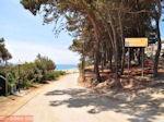 Skala Kefalonia - Kefalonia - Foto 400 - Foto van De Griekse Gids