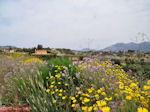 Bij Lixouri op het schiereiland Paliki - Kefalonia - Foto 536 - Foto van De Griekse Gids