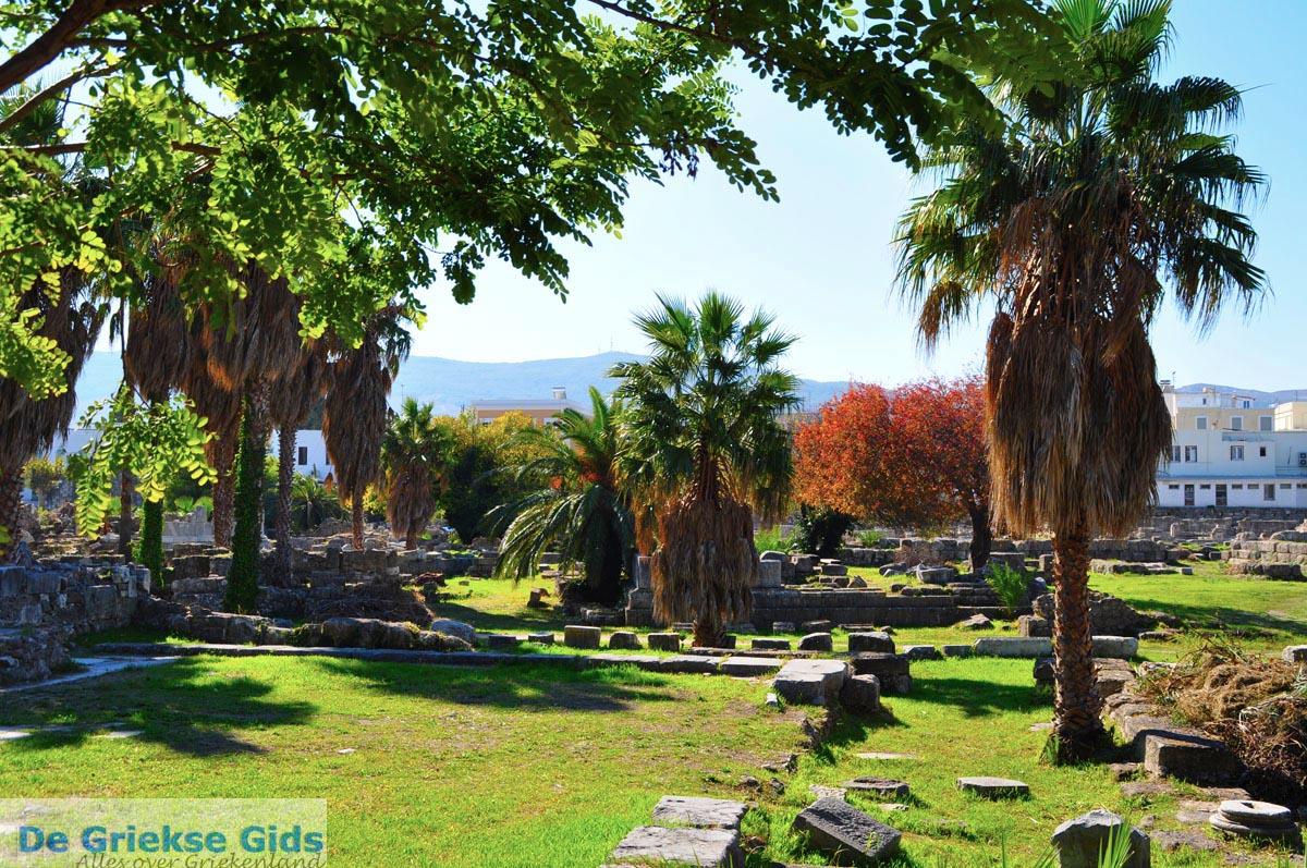 foto Kos stad (Kos-stad) | Eiland Kos | Griekenland foto 29