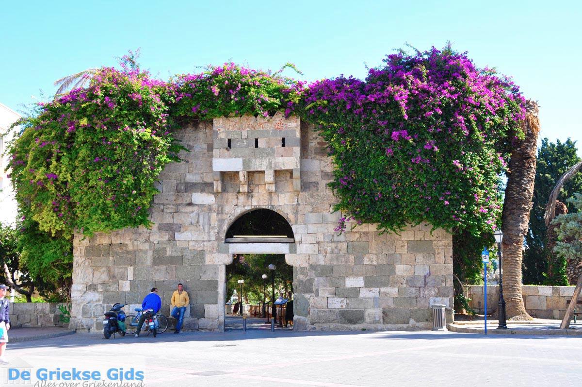 foto Kos stad (Kos-stad) | Eiland Kos | Griekenland foto 93