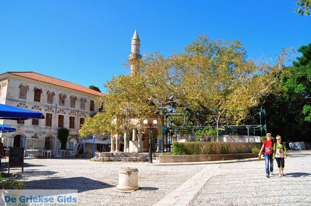foto Kos stad (Kos-stad)   Eiland Kos   Griekenland - Plataan van Hippocrates
