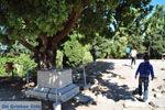 Het Odeion | Kos stad | Griekenland foto 2 - Foto van De Griekse Gids