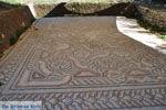 Mozaik bij het Odeion   Kos stad   Griekenland foto 2 - Foto van De Griekse Gids