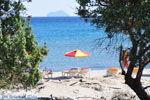 Paradise Beach Kos | Eiland Kos | Griekenland foto 11 - Foto van De Griekse Gids