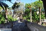 Kos stad (Kos-stad) | Eiland Kos | Griekenland foto 12 - Foto van De Griekse Gids