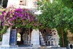 Kos stad (Kos-stad) | Eiland Kos | Griekenland foto 28 - Foto van De Griekse Gids