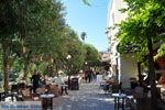 Kos stad (Kos-stad) | Eiland Kos | Griekenland foto 98 - Foto van De Griekse Gids