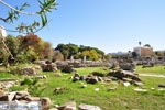 Kos stad (Kos-stad) | Eiland Kos | Griekenland foto 99 - Foto van De Griekse Gids