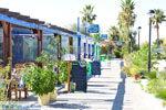 Tigaki Kos | Eiland Kos | Griekenland foto 15 - Foto van De Griekse Gids