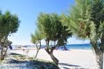 Marmari Kos | Eiland Kos | Griekenland foto 4 - Foto van De Griekse Gids