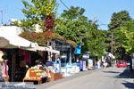 Zia | Bergdorp Kos | Griekenland foto 23 - Foto van De Griekse Gids
