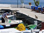 Eiland Kalamos bij Lefkas - Griekenland - foto 18 - Foto van De Griekse Gids