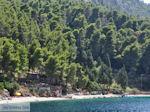 Eiland Kalamos bij Lefkas - Griekenland - foto 27 - Foto van De Griekse Gids