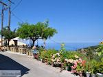 Heerlijk genieten in Athani - Lefkas (Lefkada) - Foto van De Griekse Gids
