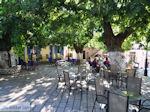 Het dorpsplein in Englouvi - Lefkas (Lefkada) - Foto van De Griekse Gids