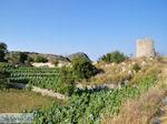 Op de hoogvlakte bij Englouvi foto 2 - Lefkas (Lefkada) - Foto van De Griekse Gids