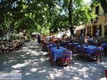 JustGreece.com Het gezellige plein van Karia (Karya) foto 4 - Lefkas (Lefkada) - Foto van De Griekse Gids