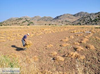 Englouvi plateau foto 11 - Lefkas (Lefkada) - Foto van De Griekse Gids