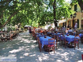 Karia dorpsplein - Mikros Gialos foto 9 - Lefkas (Lefkada) - Foto van De Griekse Gids