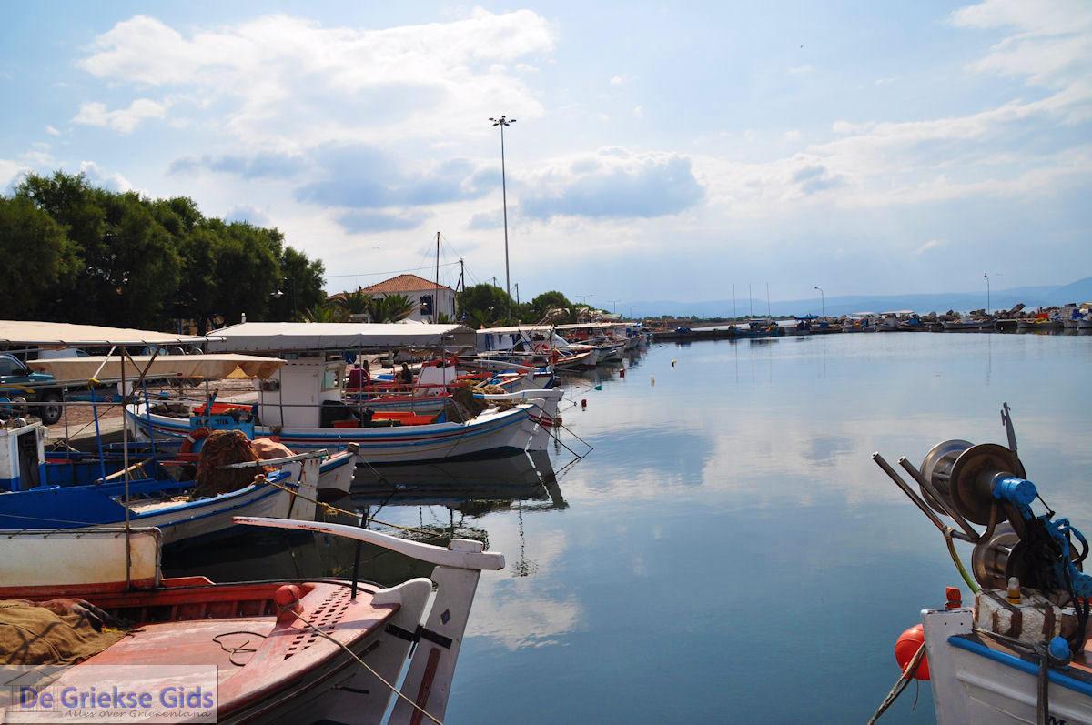 foto Het haventje van Skala Kallonis