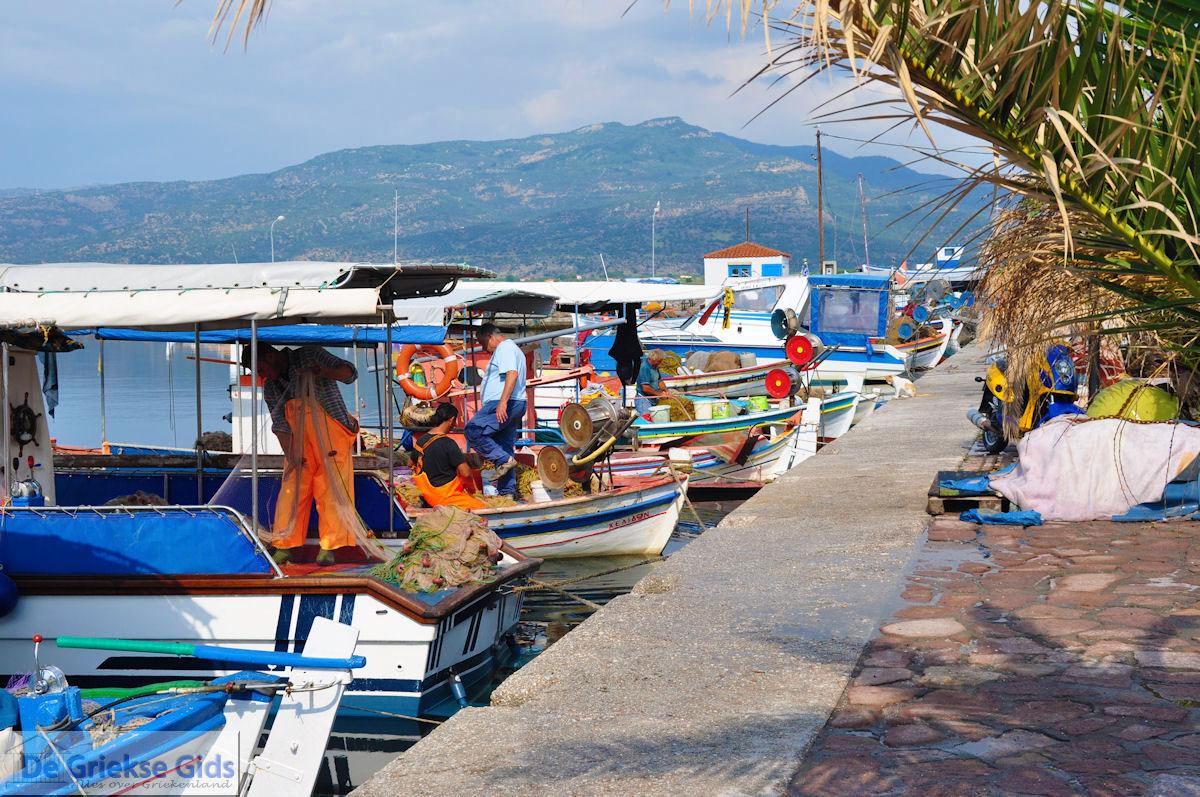 foto Bootjes aan vissershaven van Skala Kalllonis