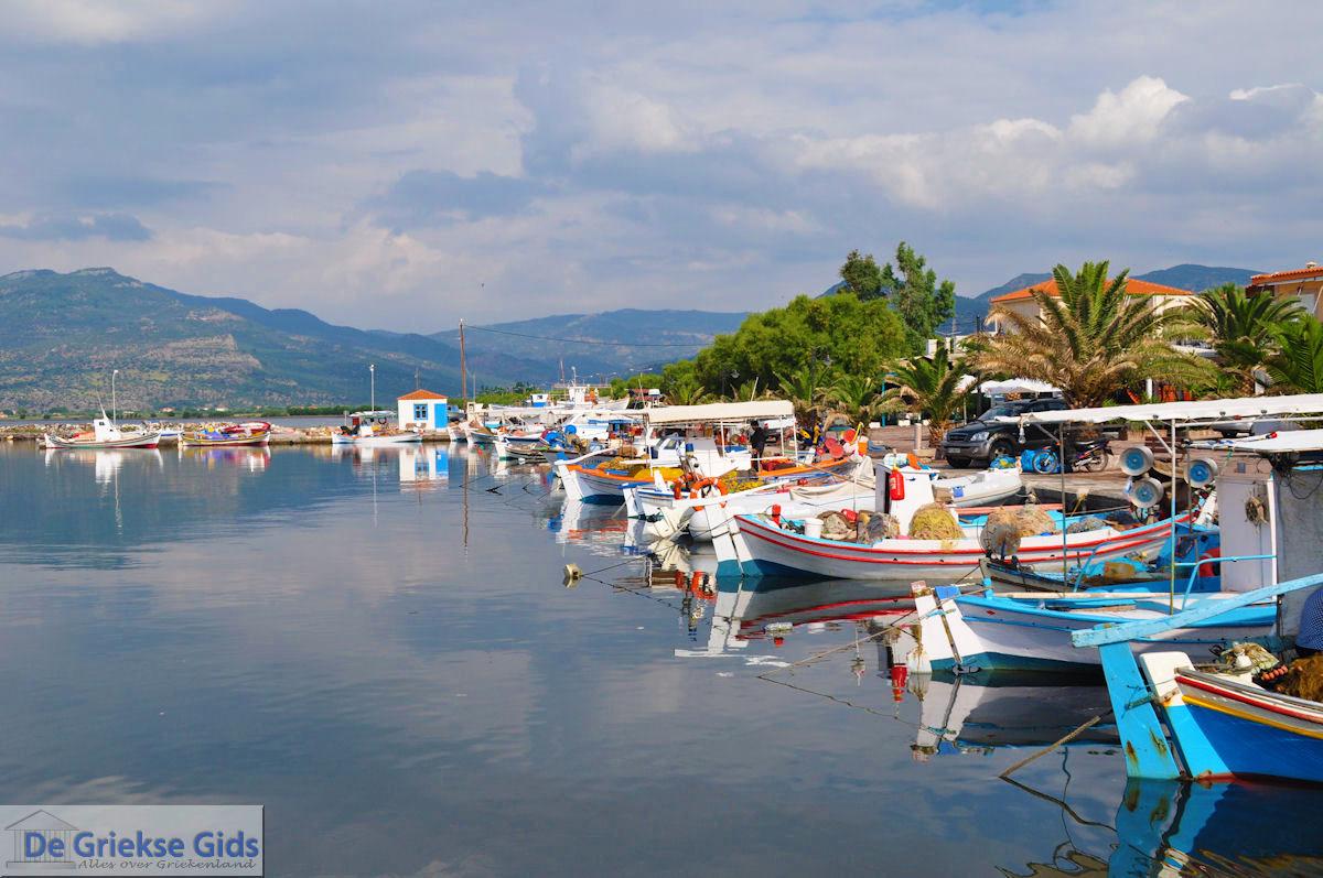 foto Het kleurrijke haventje van Skala Kallonis