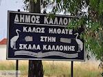 Welkom in Skala Kallonis - Foto van De Griekse Gids