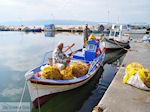 De vissers van Skala Kallonis - Foto van De Griekse Gids