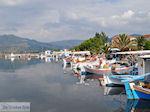 Het kleurrijke haventje van Skala Kallonis - Foto van De Griekse Gids