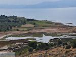 Waterrijk gebied bij Kalloni - Foto van De Griekse Gids