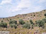 Ten westen van de baai van Kalloni foto 001 - Foto van De Griekse Gids