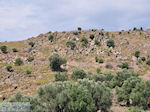 Ten westen van de baai van Kalloni foto 002 - Foto van De Griekse Gids