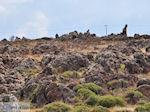 Rotsen onderweg naar Eressos foto 003 - Foto van De Griekse Gids
