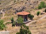 Versteende woud bij Sigri foto4 - Foto van De Griekse Gids