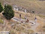 Versteende woud bij Sigri foto7 - Foto van De Griekse Gids